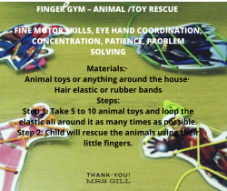 Fine Motor Skills Game-Finger Gym
